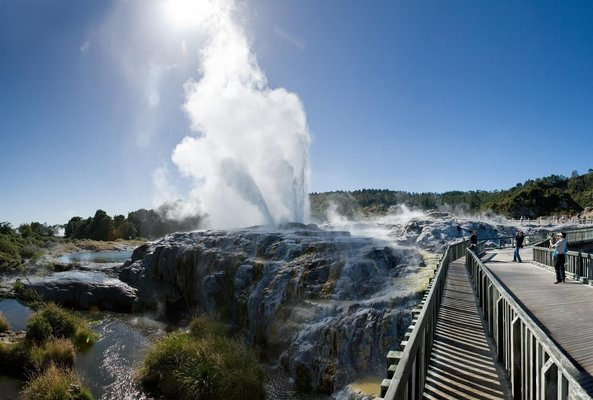 Waitomo and Rotorua Experience, Sightseeing in Auckland - Tour