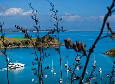 Taste of Waiheke Tour, Sightseeing in Auckland - Tour