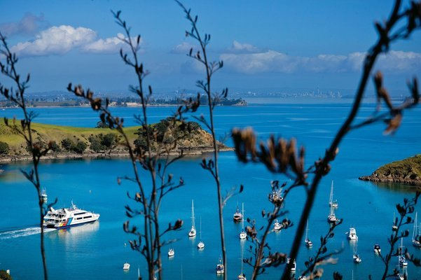 Waiheke Island Twilight Wine and Dine Tour, Sightseeing in Auckland - Tour