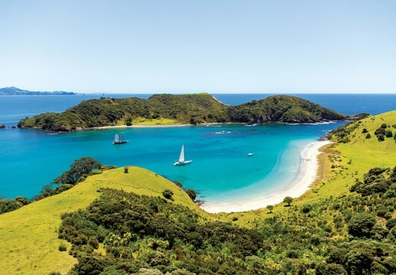 The Cream Trip - Day in the Bay Tour, Sightseeing in Paihia - Tour