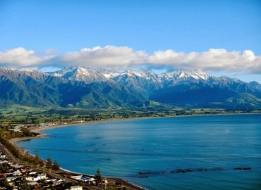 Kaikoura Swimming with Dolphins Tour, Sightseeing in Christchurch - Tour