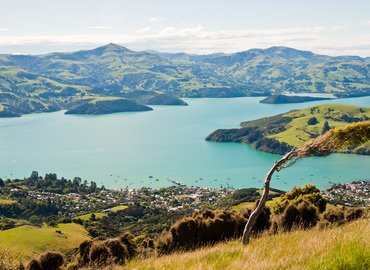 Akaroa Day Tour including Harbour Cruise, Sightseeing in Christchurch - Tour