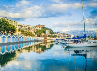 City Sights and Coastline Tour, Sightseeing in Wellington - Tour