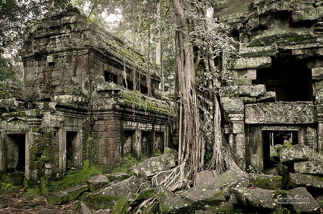 Cambodia Packages - Collection