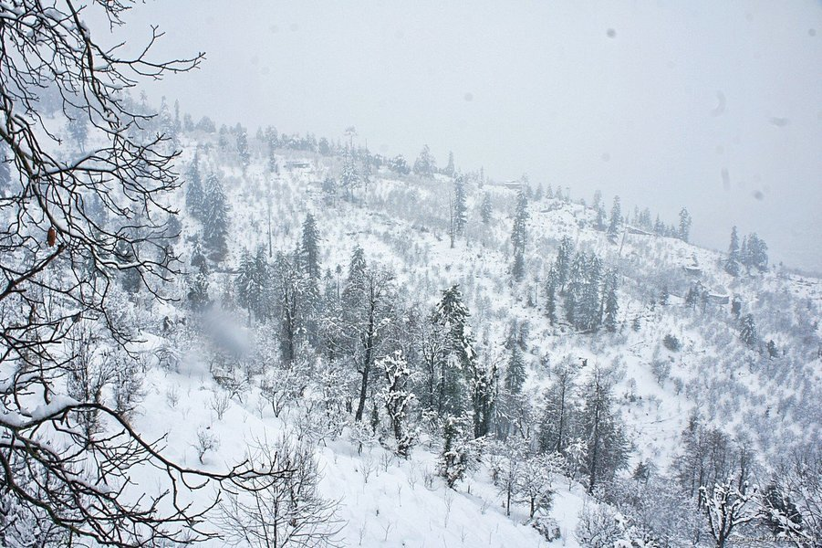 Snow Trek, Manali - Tour