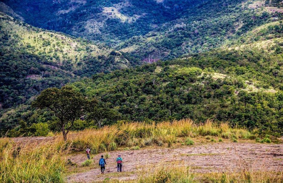 Two Day Trek To Kodaikanal Palani Hills - Tour