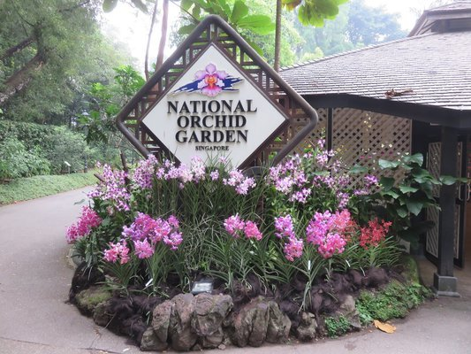 National Orchid Garden Tickets in Singapore - Tour