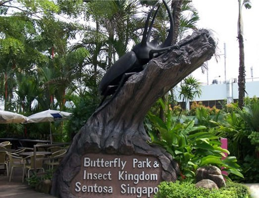 Butterfly park and Insect Kingdom Tickets in Singapore - Tour