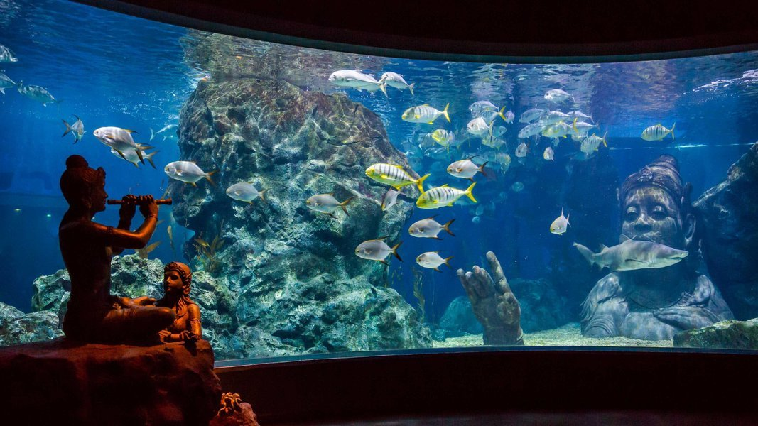 Sea Life Bangkok + Madame Tussaud's Combo Ticket in Bangkok - Tour