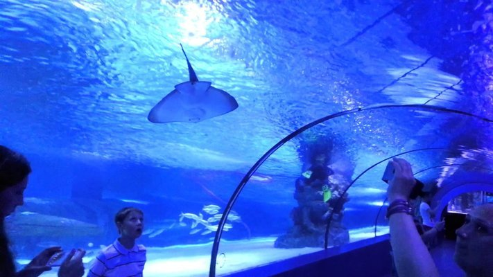 Antalya Aquarium Tickets with Transfer, Sightseeing in Antalya - Tour