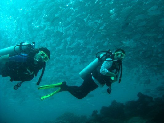 Scuba Diving in Kusadasi, Sightseeing in Kusadasi - Tour