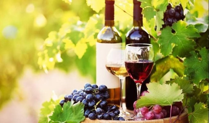 Buzzing Melbourne & Sydney with Wine-tasting tours - Tour