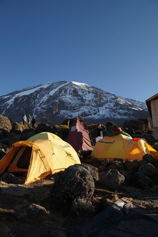 7-Day Kilimanjaro Trek via Machame Route - Tour
