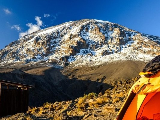 11-Day Kilimanjaro Trek via Northern Circuit - Tour