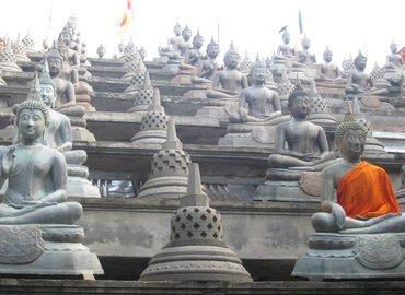Tour Package to Sri Lanka 06 Days (Ceylon Tour) - Tour