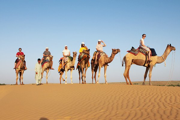 Rajasthan with camels & castles - Tour