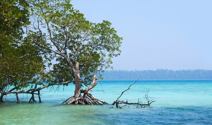 Thrilling Andaman Super Saver - Tour