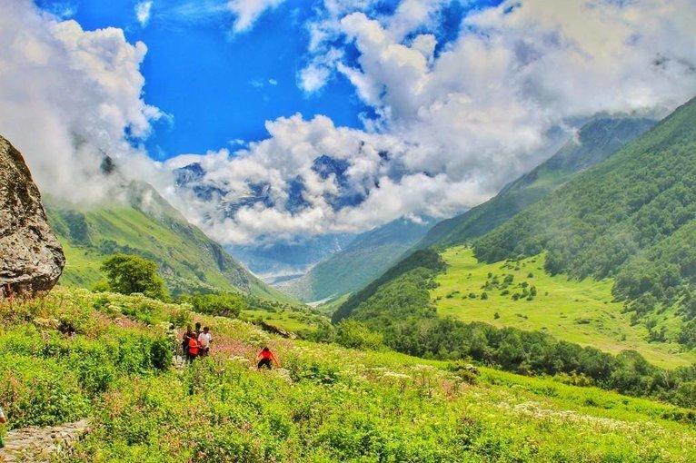 Valley of flowers Tickets in Uttarakhand - Tour