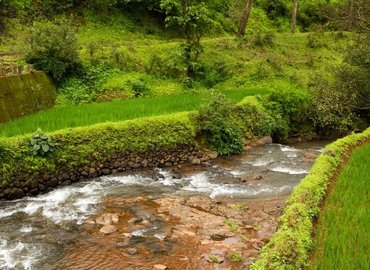 Camping in Kaas Plateau - Tour