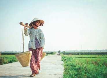 Vietnam - Collection