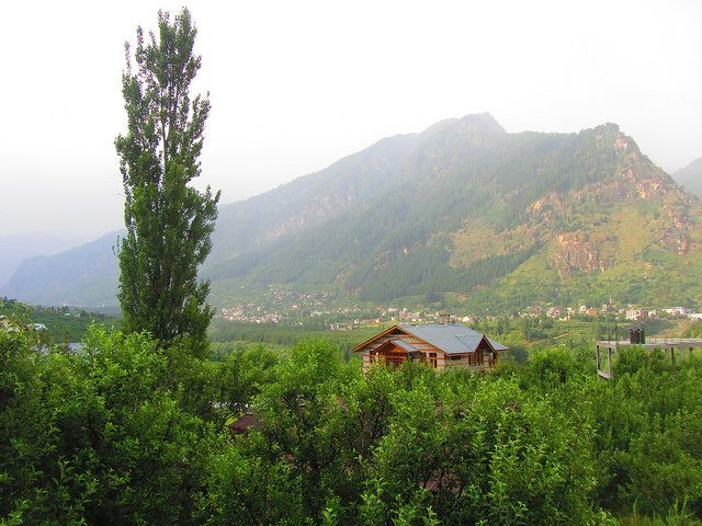 Youth Camps in Manali Wild - Tour