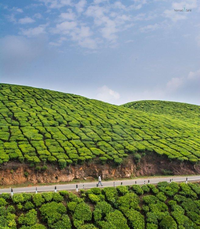 All Kerala Holiday - Tour