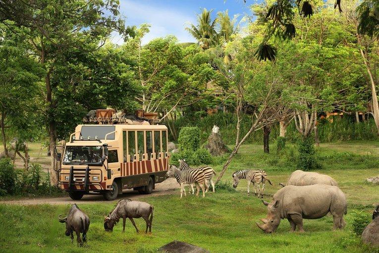 Bali Safari and Mairne Park Tickets in Bali - Tour