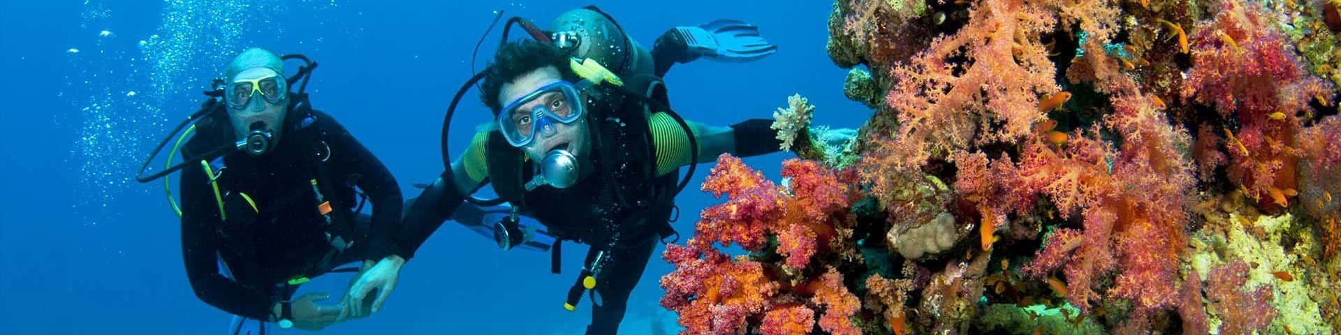 Combo of Scuba and Water sports - Tour