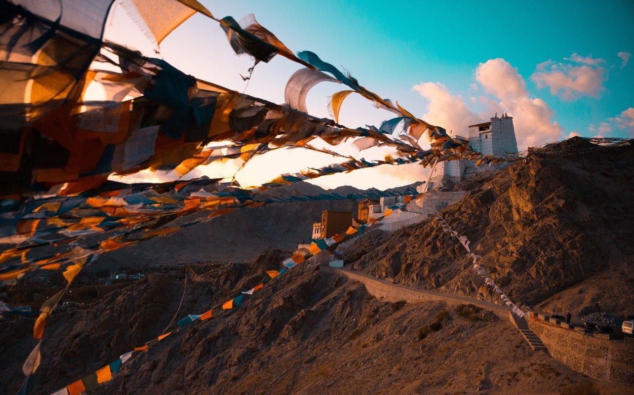 Delhi to Ladakh Road Trip - Collection