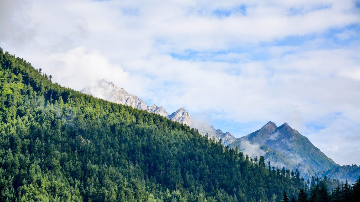 Manali Trekking Packages - Collection