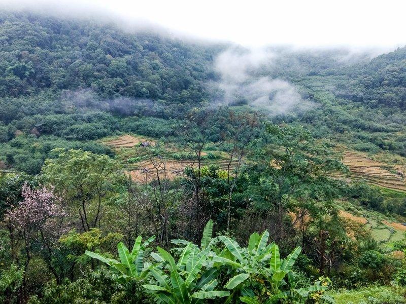 Nagaland and Kaziranga Holiday - Tour