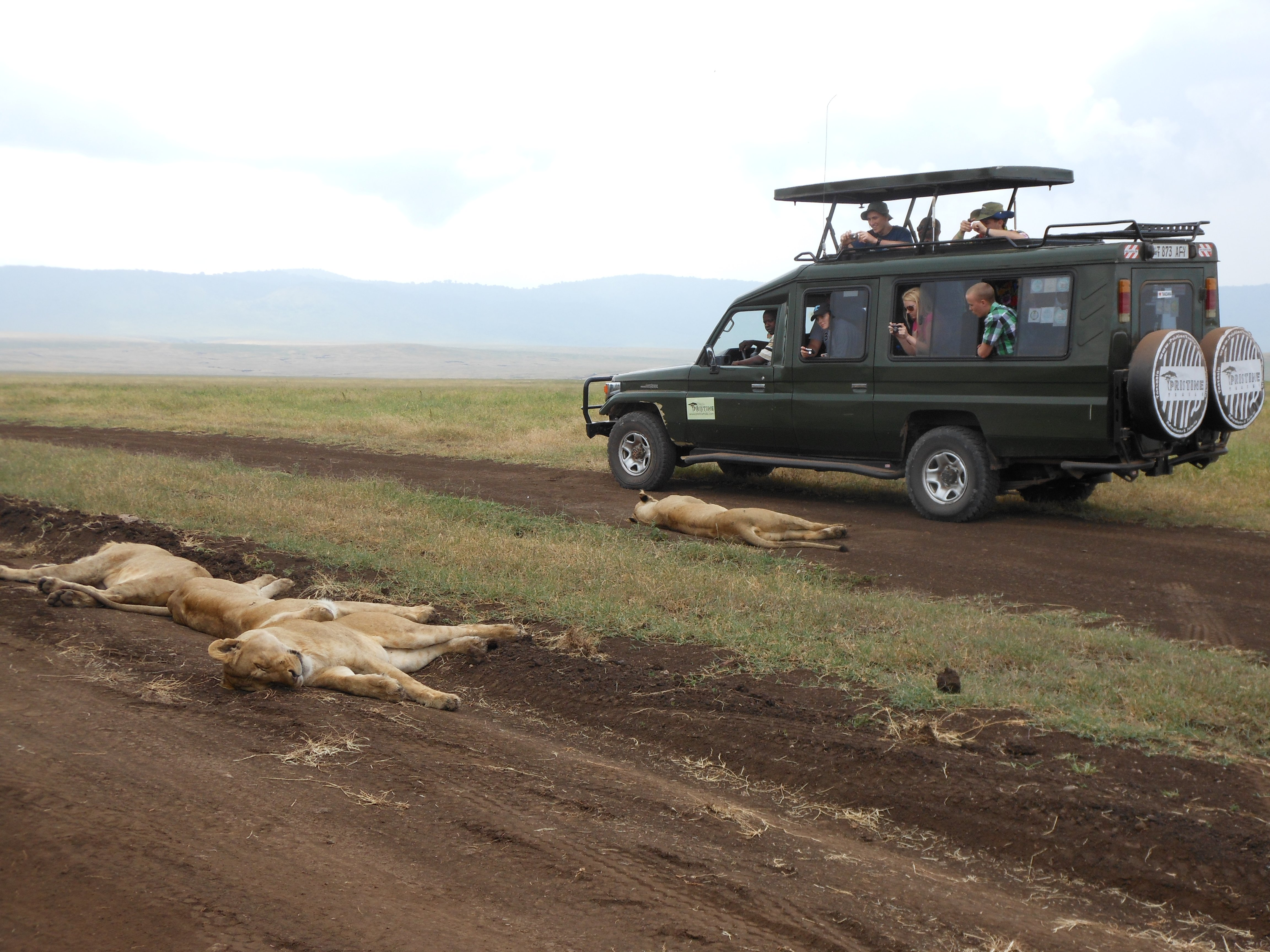 best_safari_in_tanzania.JPG - description