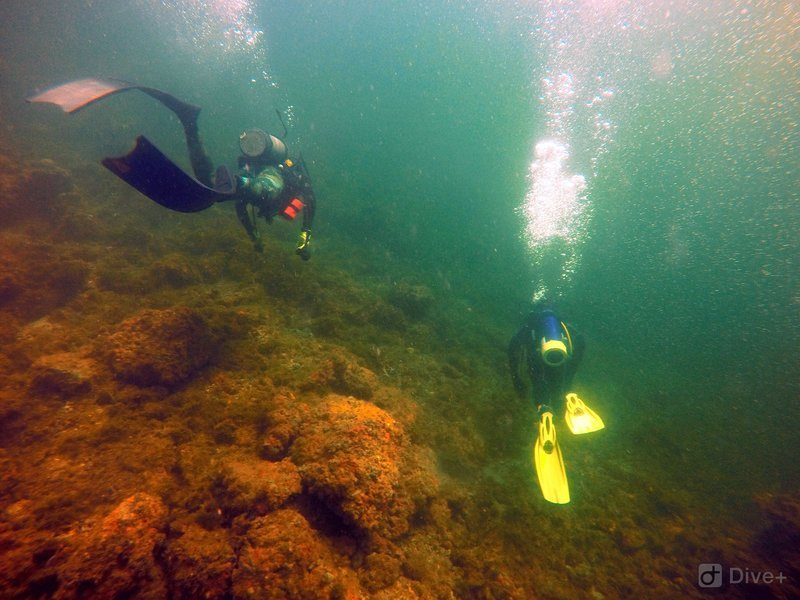 The SCUBA Experience - Beginners - Tour
