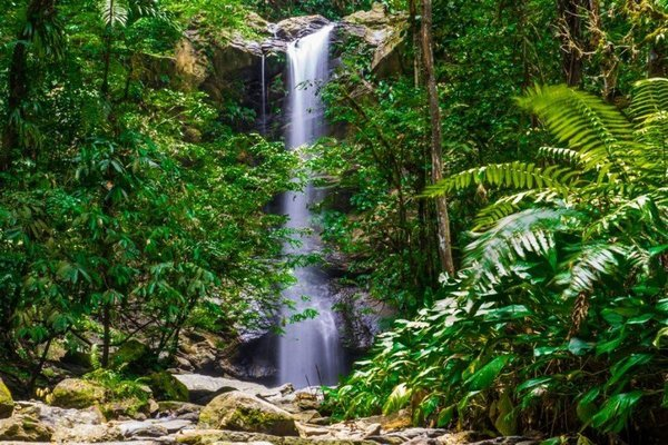 Avocat Waterfall - Tour