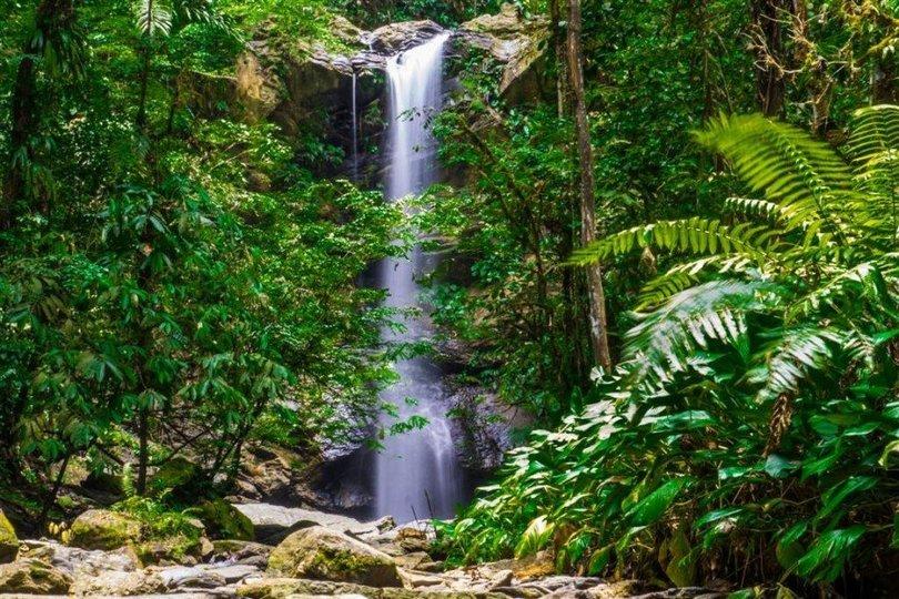 Avocat Waterfall - Tour