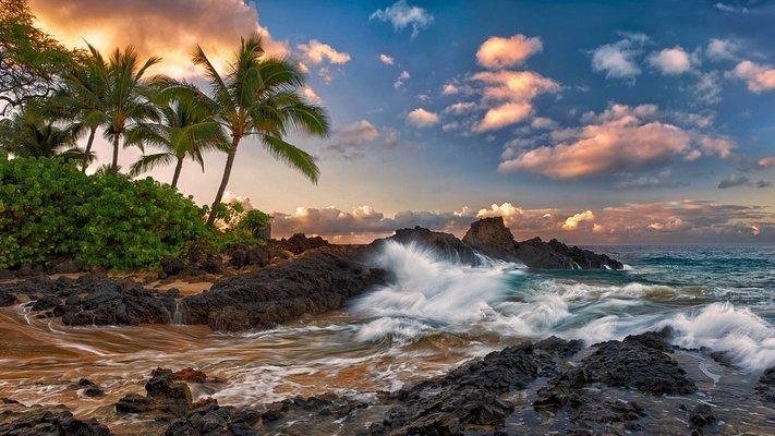 Exotic Honolulu - 5D/4N - Tour