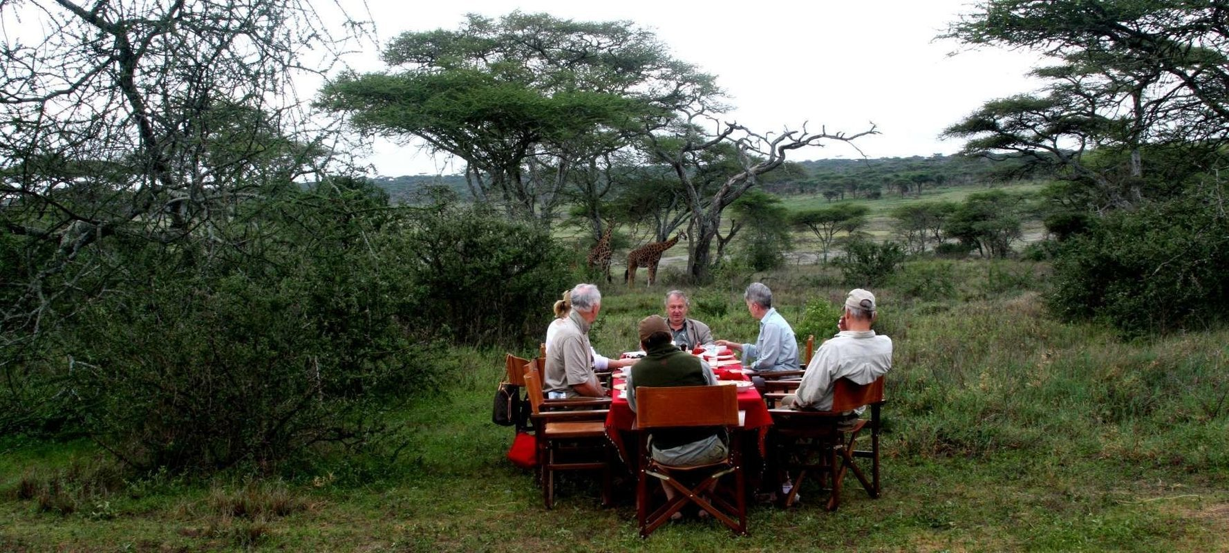 Classic African Safaris - Collection