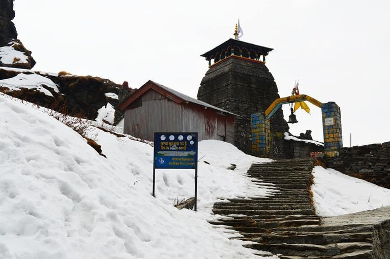 Chopta Chandrashila Trek - Himalayas - Tour