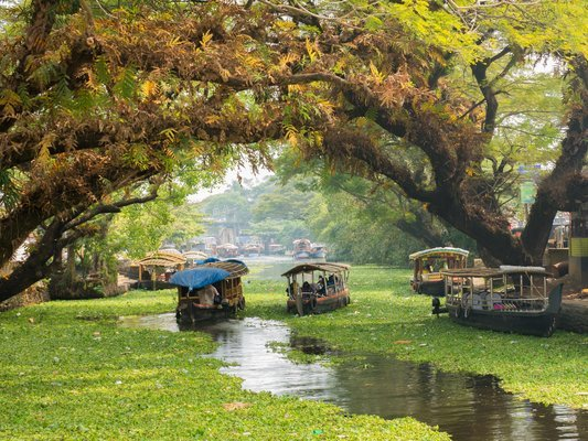 Backpacker's Kerala Tour - Tour