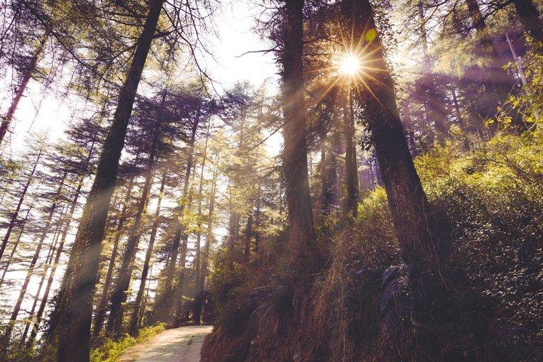 Beyond Himachal Explorer - Tour