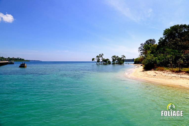 Ocean Adventure Andamans - Tour