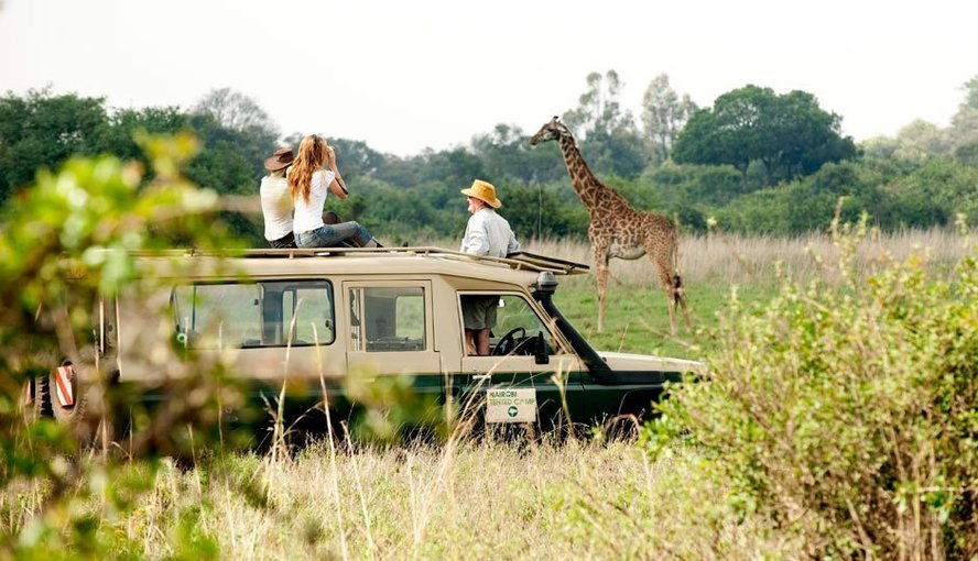 KENYA SAFARI PACKAGE - Tour