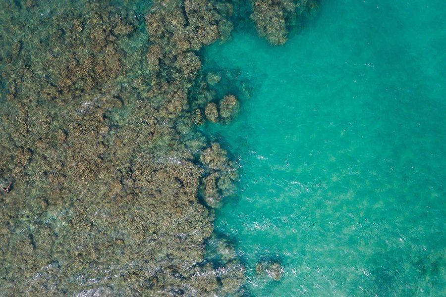 Enchanting Andaman Islands | 7N/8D - Tour